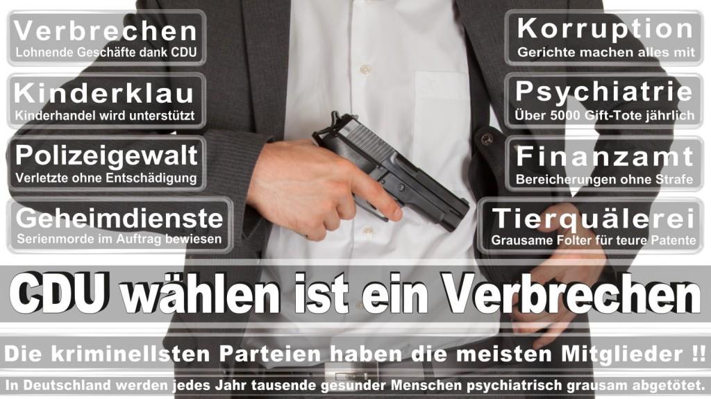 Landtagswahl-2016-CDU (306)