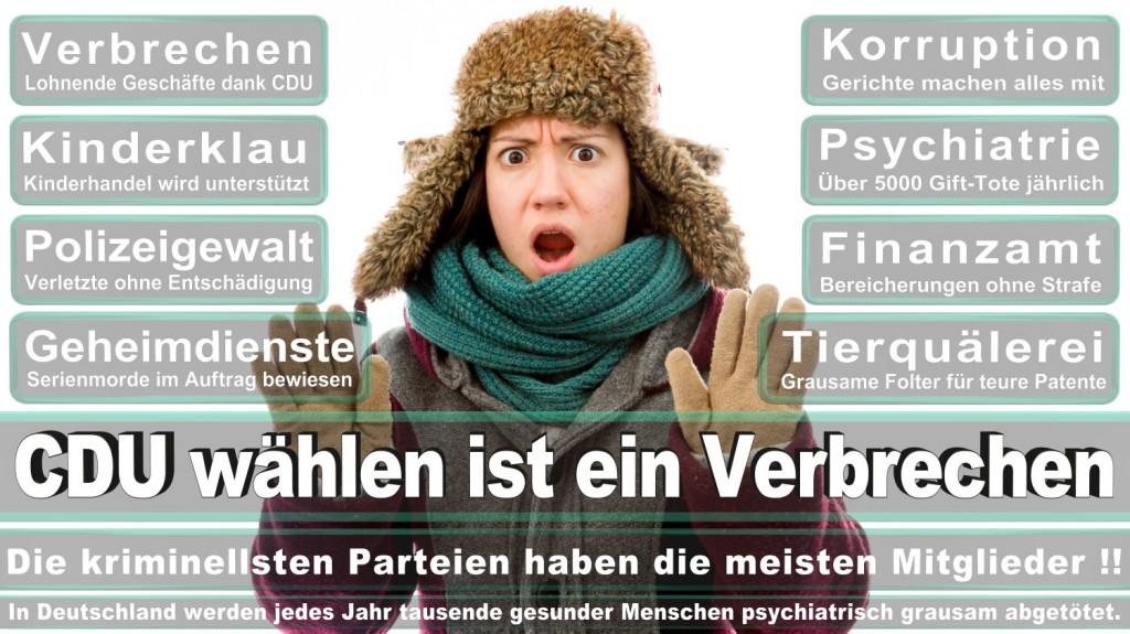 Landtagswahl-2016-CDU (308)