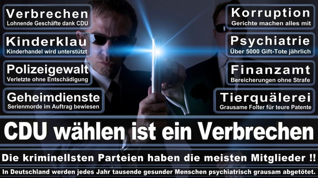 Landtagswahl-2016-CDU (310)