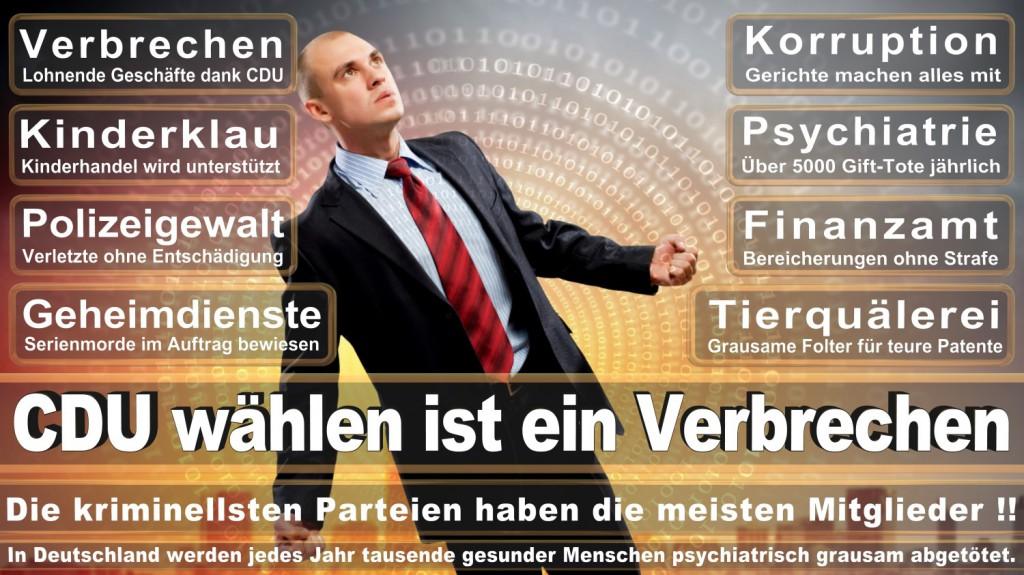Landtagswahl-2016-CDU (314)