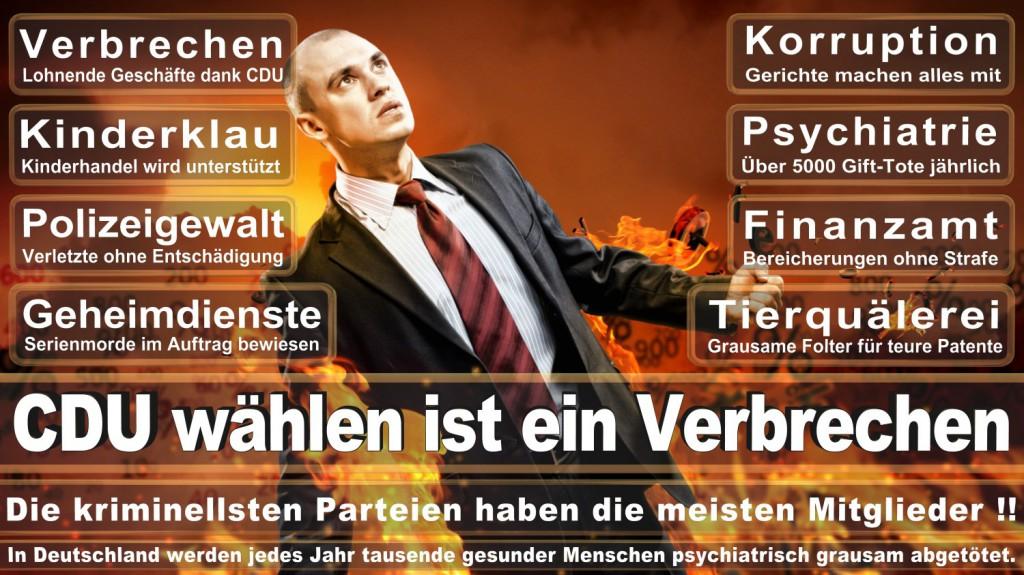 Landtagswahl-2016-CDU (315)