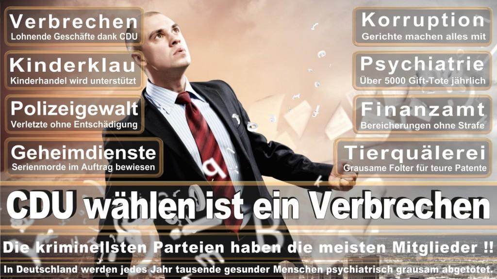 Landtagswahl-2016-CDU (316)