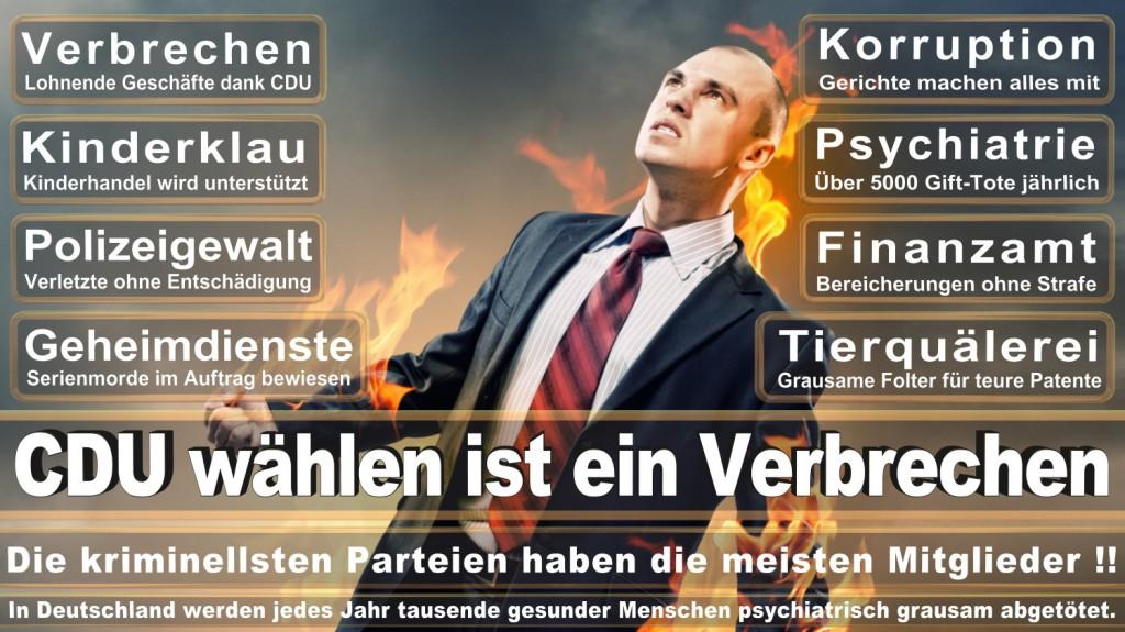 Landtagswahl-2016-CDU (317)