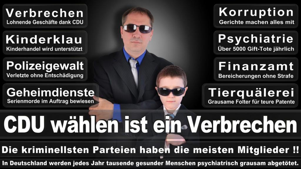 Landtagswahl-2016-CDU (321)