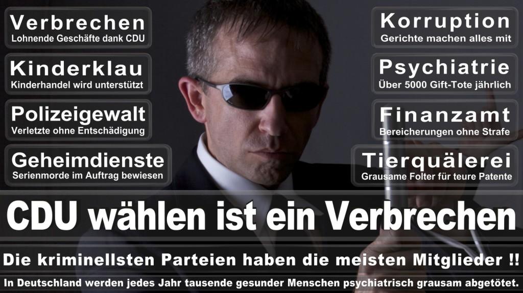Landtagswahl-2016-CDU (323)