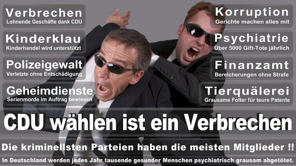 Landtagswahl-2016-CDU (324)