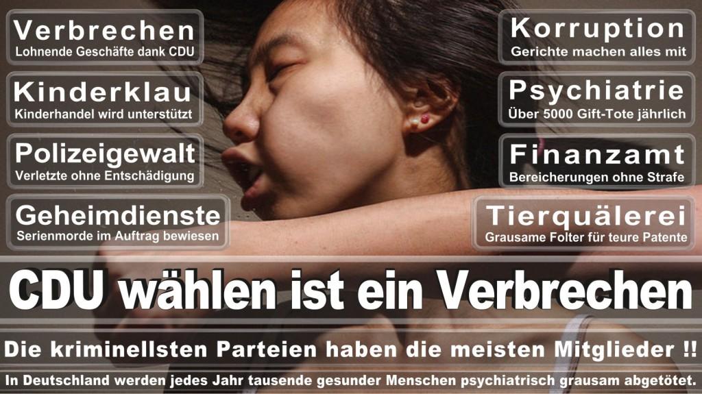 Landtagswahl-2016-CDU (326)