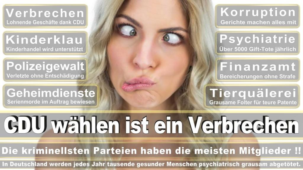 Landtagswahl-2016-CDU (332)