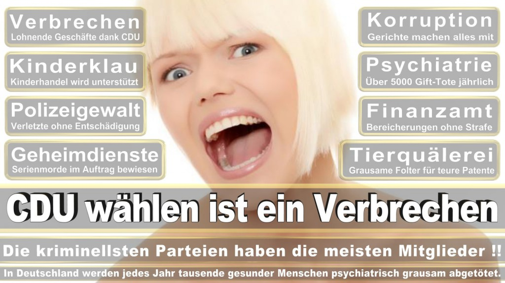 Landtagswahl-2016-CDU (333)