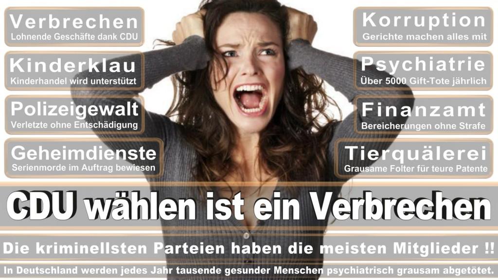 Landtagswahl-2016-CDU (336)
