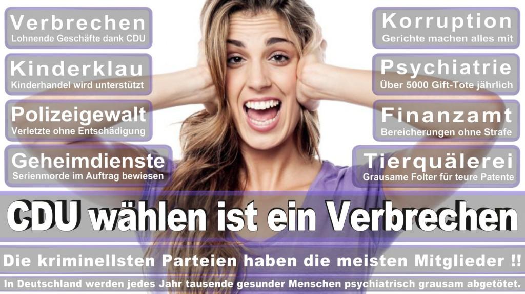 Landtagswahl-2016-CDU (337)