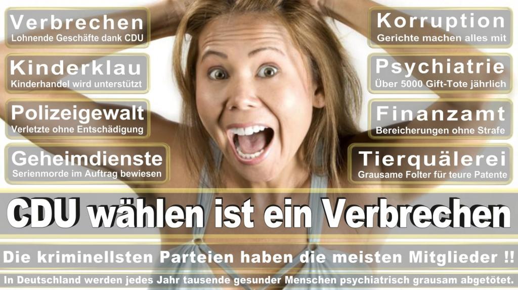 Landtagswahl-2016-CDU (338)