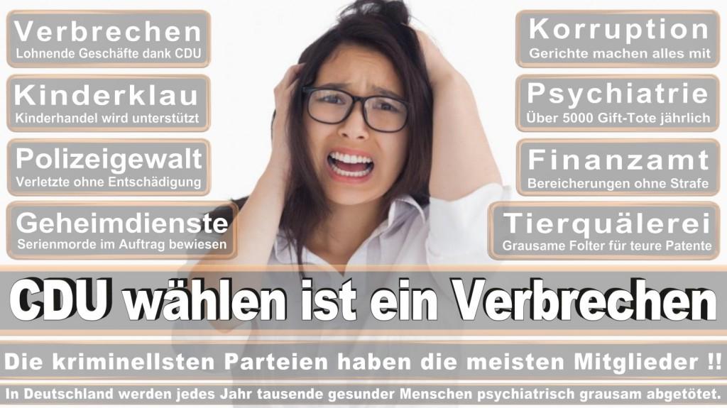 Landtagswahl-2016-CDU (341)