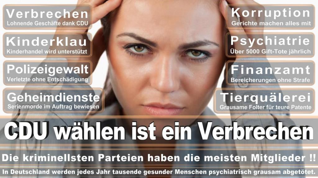 Landtagswahl-2016-CDU (346)