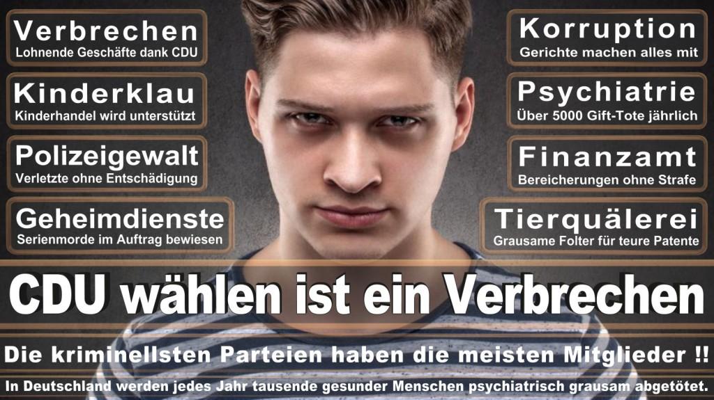 Landtagswahl-2016-CDU (347)