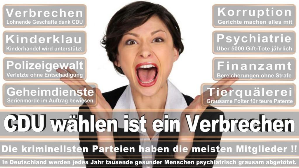 Landtagswahl-2016-CDU (348)