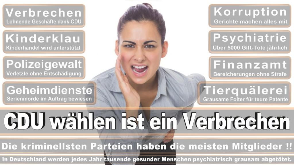 Landtagswahl-2016-CDU (349)