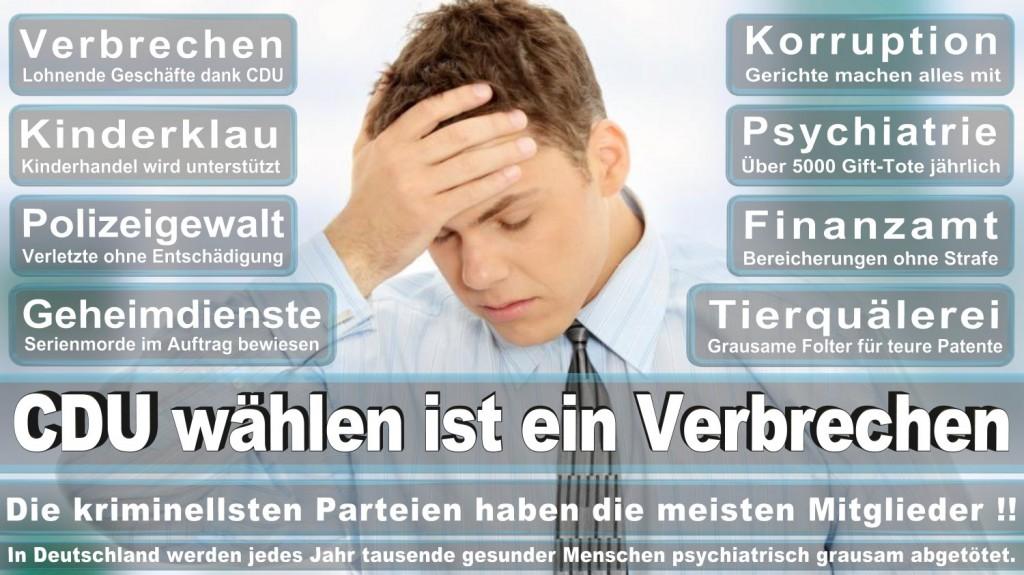 Landtagswahl-2016-CDU (350)