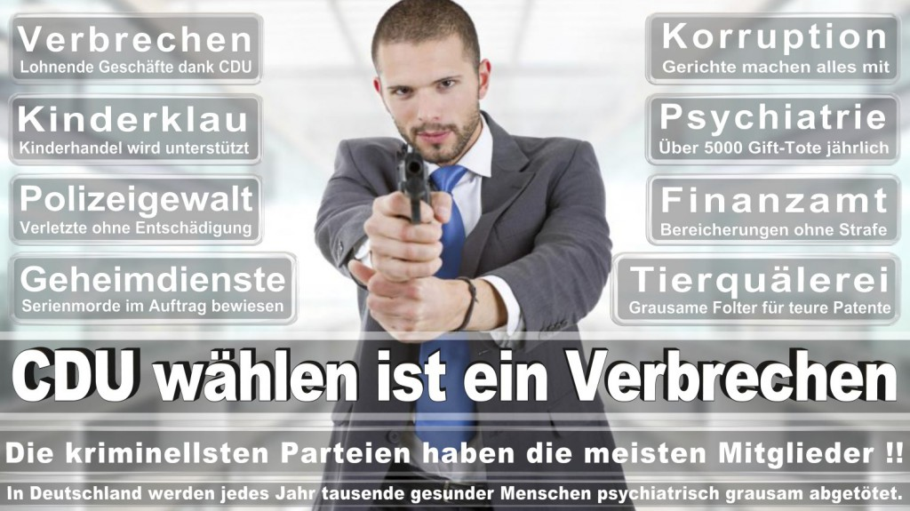 Landtagswahl-2016-CDU (351)