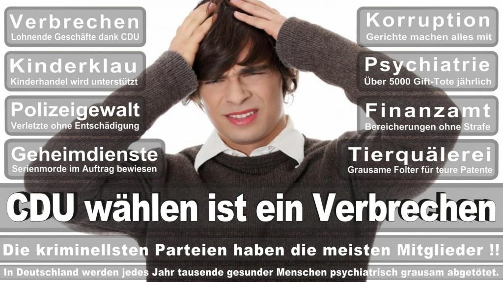 Landtagswahl-2016-CDU (353)