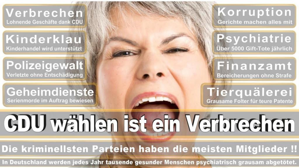 Landtagswahl-2016-CDU (354)