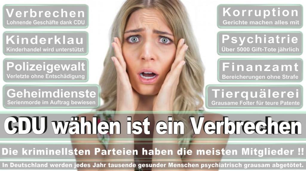 Landtagswahl-2016-CDU (355)