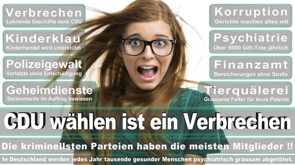 Landtagswahl-2016-CDU (357)