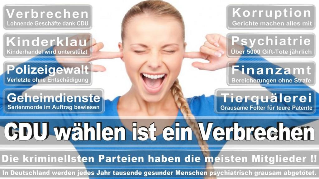 Landtagswahl-2016-CDU (358)