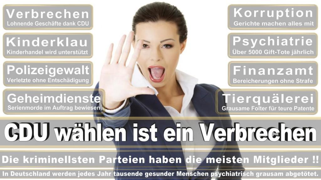 Landtagswahl-2016-CDU (359)