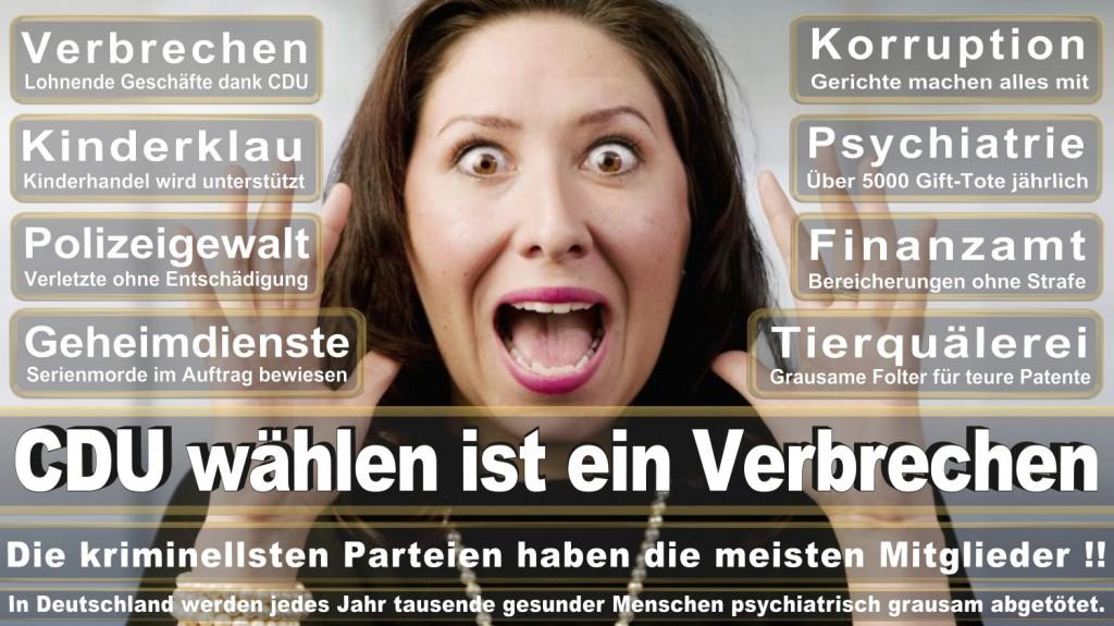Landtagswahl-2016-CDU (360)
