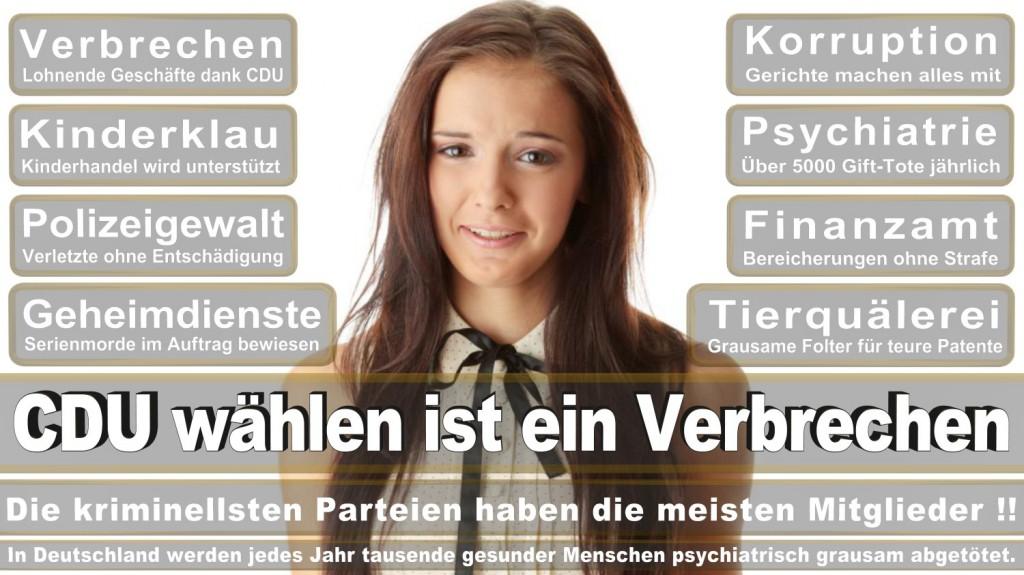 Landtagswahl-2016-CDU (363)