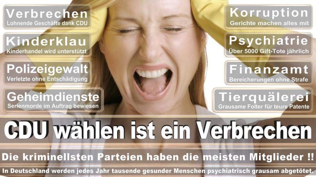 Landtagswahl-2016-CDU (367)
