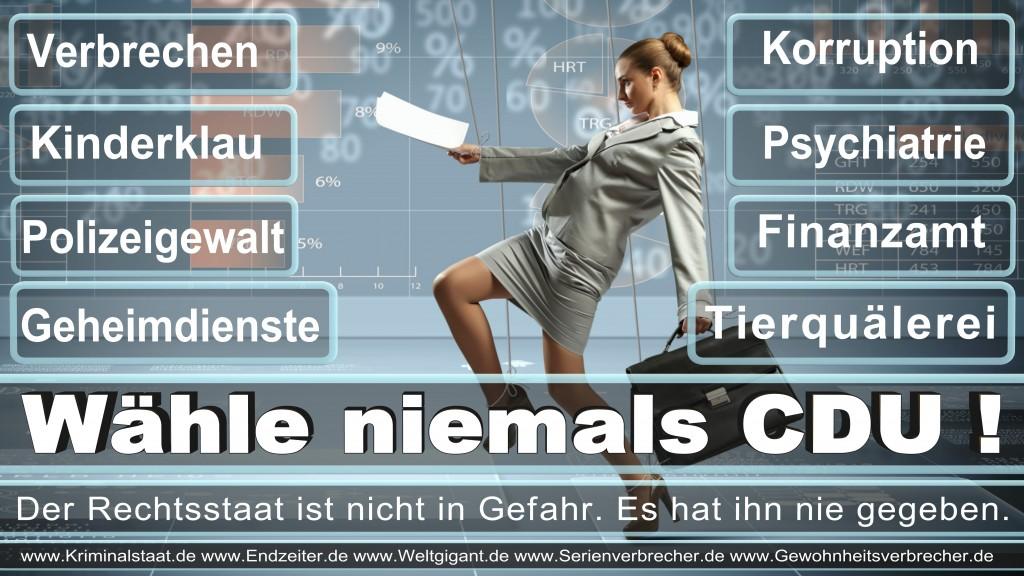 Bundestagswahl 2017 Prognose Bundestagswahl 2017 Wahlomat Bundestagswahl 2017 Kandidaten (17)