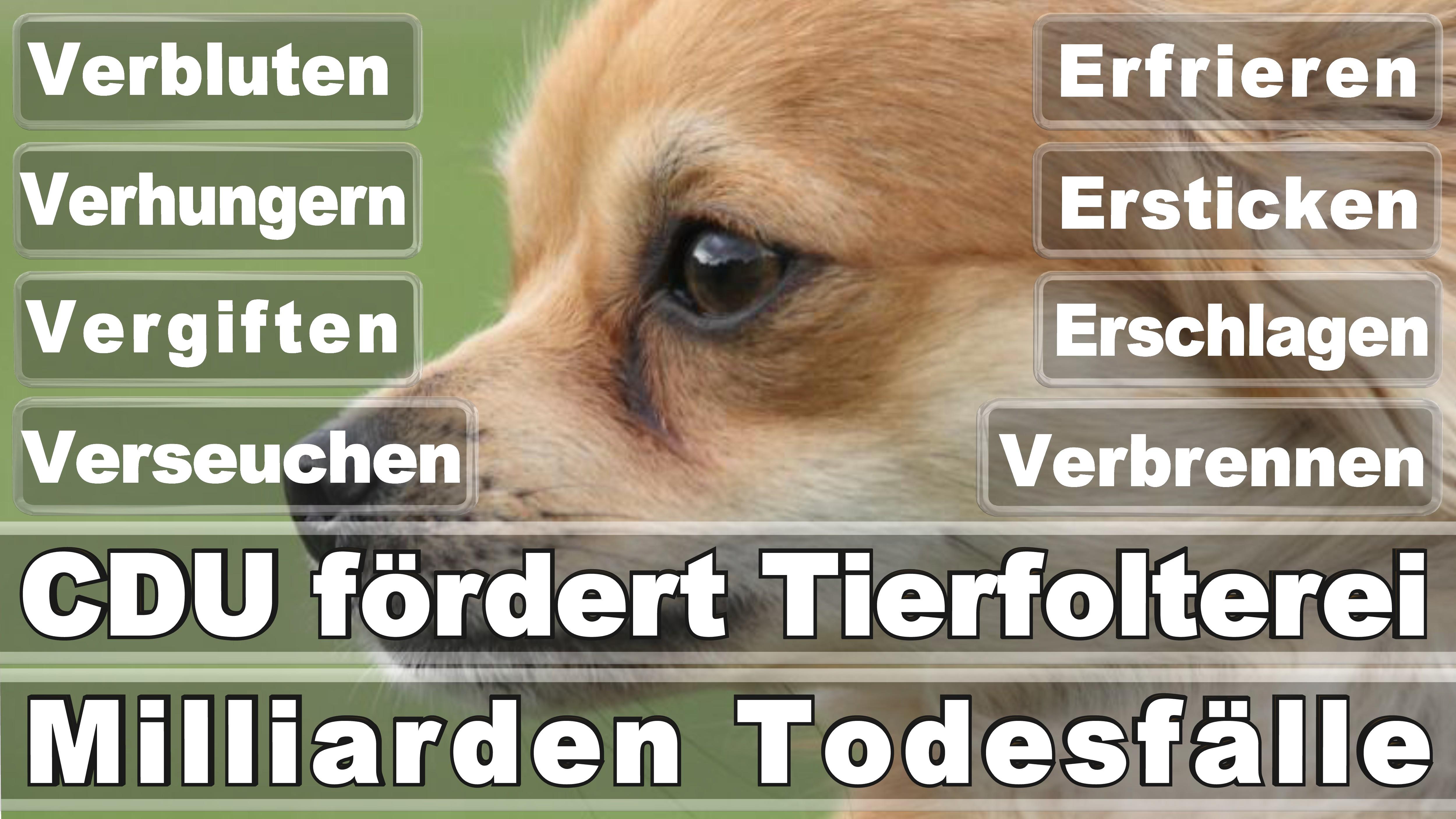 Bundestagswahl 2017 Nemecko Voľby Posters Angela Merkel Winner Loser